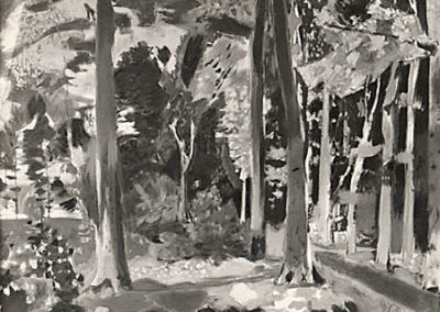 Forêt de Renneville