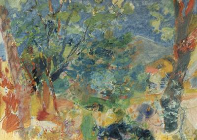 Paysage de Grimaud: le mimosa bleu