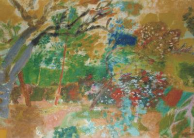 La forêt des Maures, ou les bruyères à Grimaud